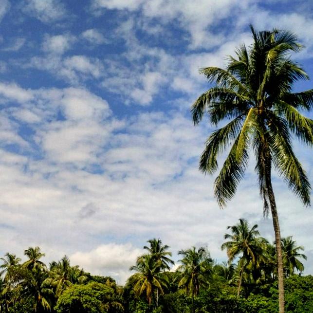 Stunning Malvan Sky