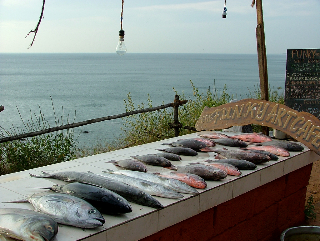 Seafood at Varkala